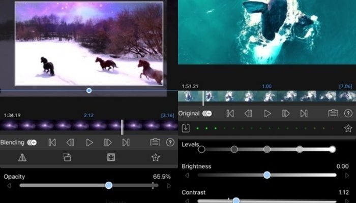 Best Reels Editors for Android and iOS